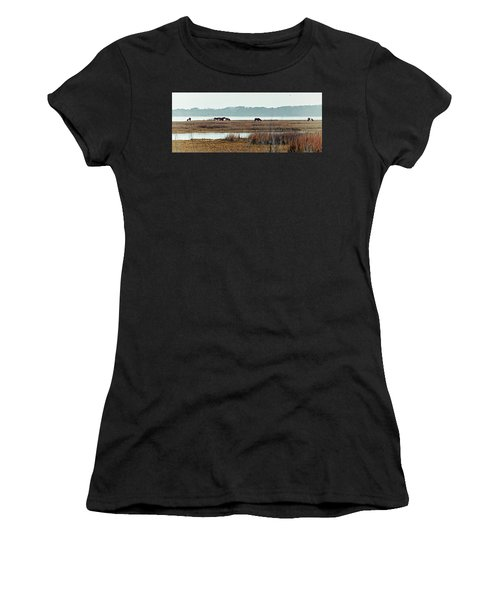 Band Of Wild Horses Along Sinepuxent Bay Women's T-Shirt