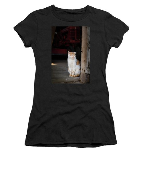 Barn Cat And Tractor Women's T-Shirt