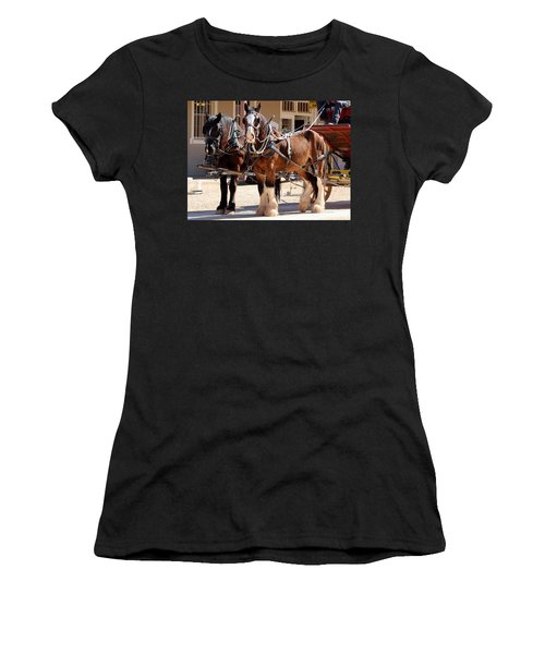 Bay Colored Clydesdale Horses Women's T-Shirt (Athletic Fit)