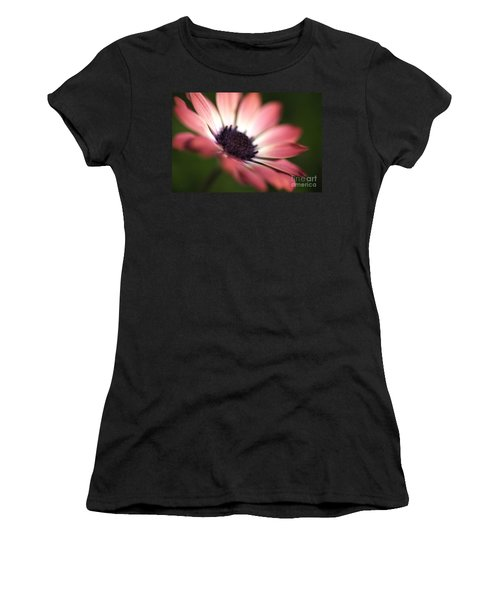 Beautiful Rich African Daisy Zion Red Flower Women's T-Shirt