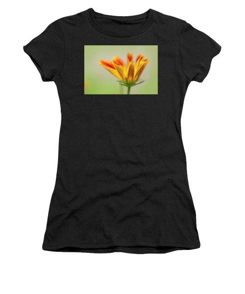 Bee Bold Women's T-Shirt