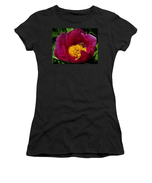 Bee On A Burgundy And Yellow Flower3 Women's T-Shirt (Athletic Fit)