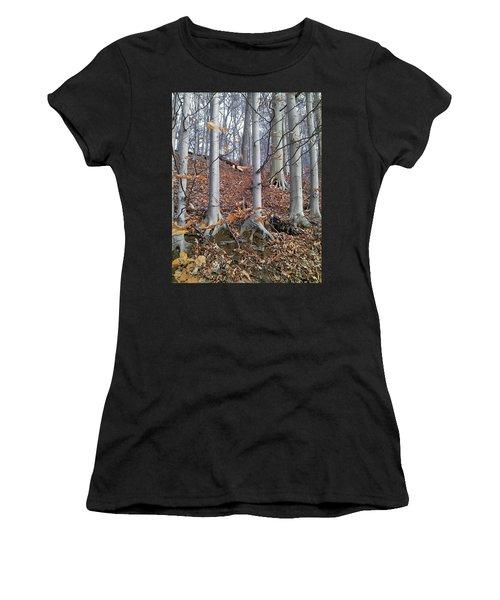 Beech Trees Women's T-Shirt