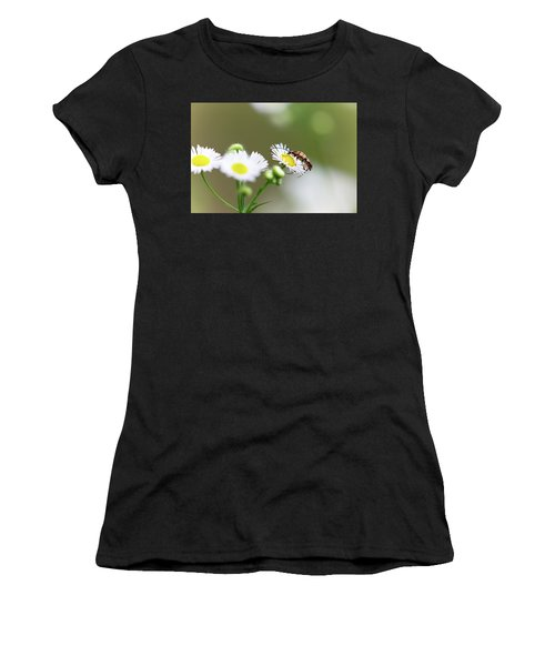 Beetle Daisy Women's T-Shirt