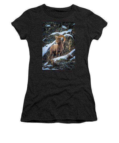 Bighorn Ram 2 Women's T-Shirt