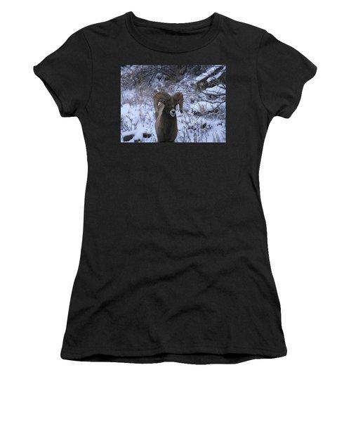 Bighorn5 Women's T-Shirt