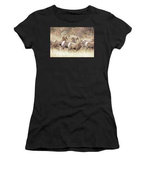 Bighorn7 Women's T-Shirt