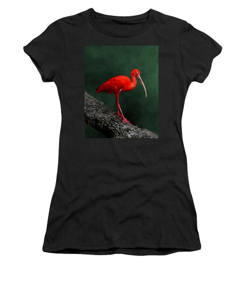 Bird On A Catwalk Women's T-Shirt