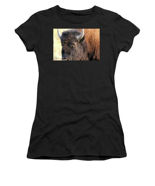 Bison Head Study Women's T-Shirt