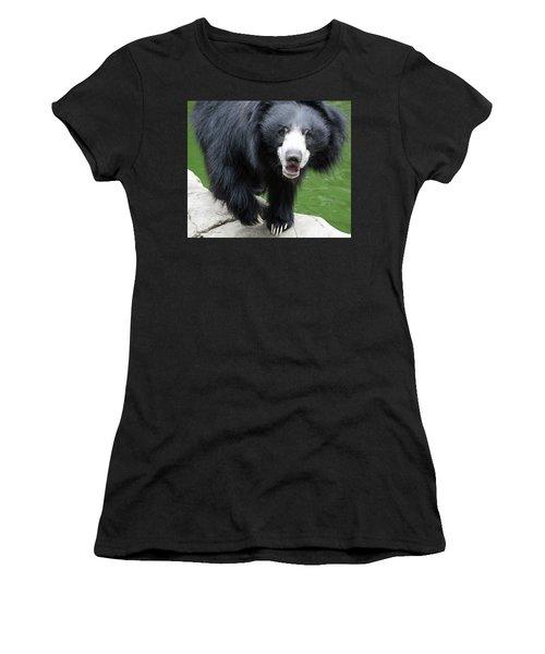 Sun Bear Women's T-Shirt (Junior Cut) by Inspirational Photo Creations Audrey Woods