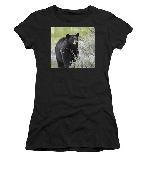Black Bear Sow Women's T-Shirt