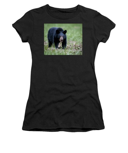Black Bear Women's T-Shirt (Junior Cut) by Tyson and Kathy Smith