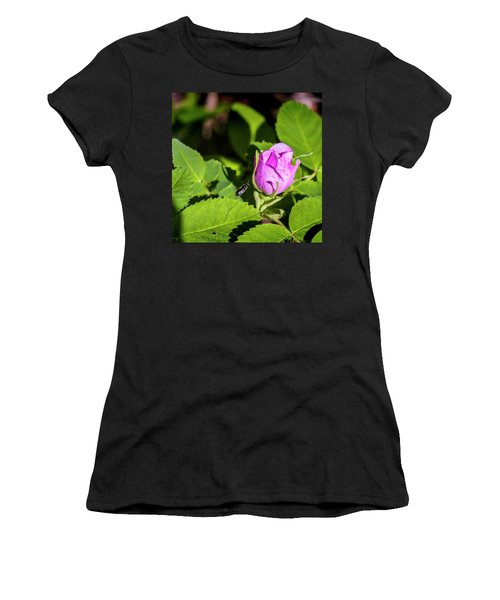Women's T-Shirt (Junior Cut) featuring the photograph Black Bee On Approach by Darcy Michaelchuk