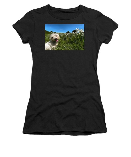 Blooming Daffodils In The Antola Park With Maltese II Paint Women's T-Shirt