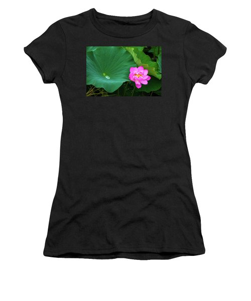 Blooming Pink And Yellow Lotus Lily Women's T-Shirt