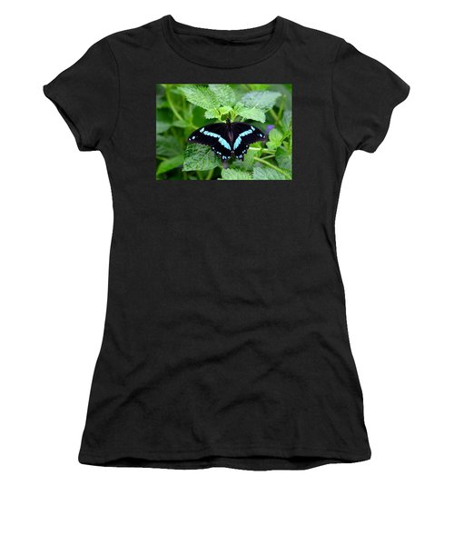 Blue Banded Swallowtail Butterfly Women's T-Shirt (Athletic Fit)