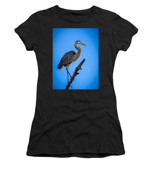 Blue On Blue Women's T-Shirt
