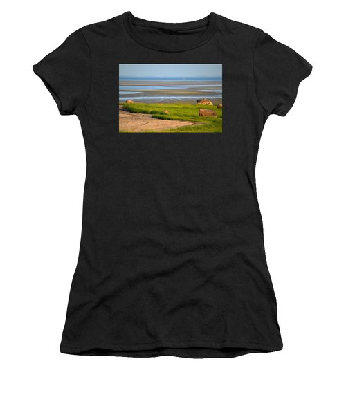 Breakwater Beach At Low Tide Women's T-Shirt (Athletic Fit)