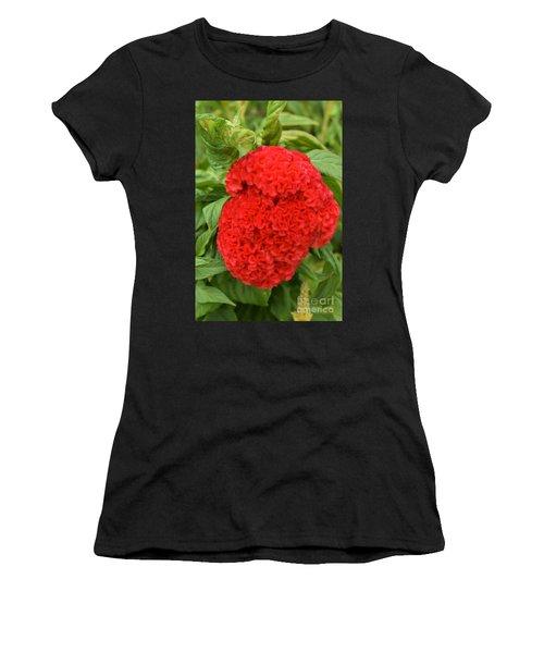 Bright Red Cockscomb Women's T-Shirt