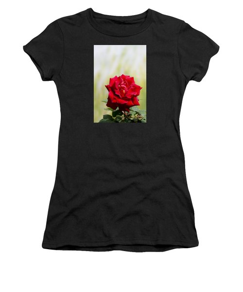 Bright Red Rose Women's T-Shirt (Athletic Fit)