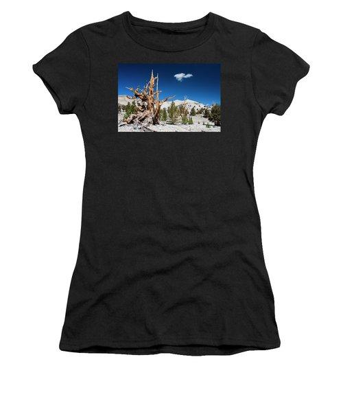 Bristlecone Pine - Pinus Longaeva Women's T-Shirt (Athletic Fit)