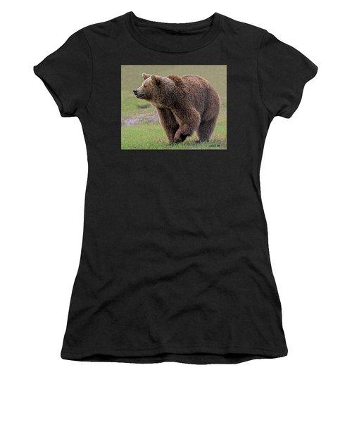 Brown Bear 14.5 Women's T-Shirt