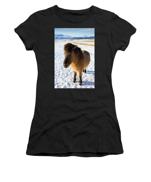 Women's T-Shirt (Junior Cut) featuring the photograph Brown Icelandic Horse In Winter In Iceland by Matthias Hauser
