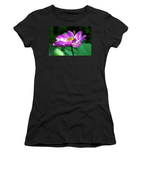 Brushed Up And Dressed For Show Women's T-Shirt