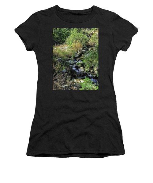 Bubbling Brook Women's T-Shirt