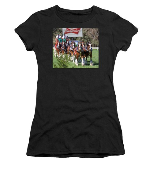 Budweiser Clydesdales Perfection Women's T-Shirt