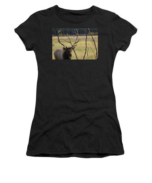 Bullelk2 Women's T-Shirt