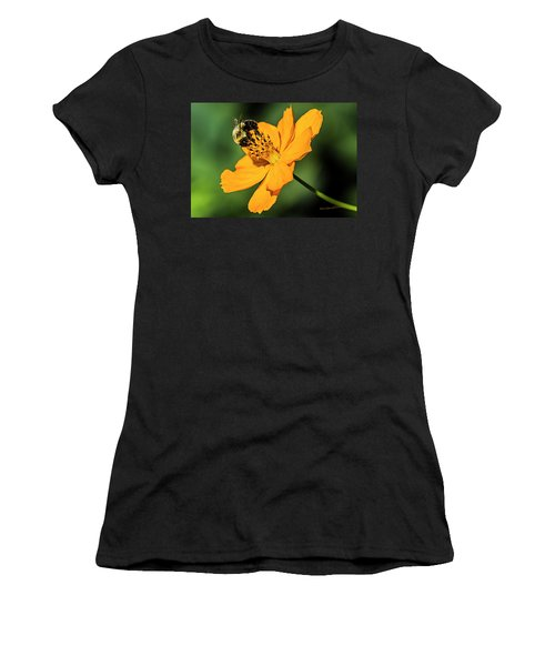 Bumble Bee And Flower Women's T-Shirt (Athletic Fit)