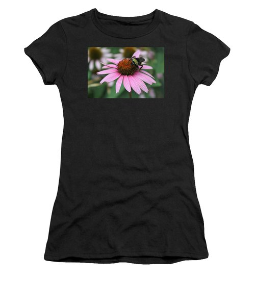 Bumble Bee On Pink Coneflower Women's T-Shirt