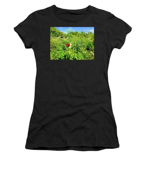 Butterfly Bonanza Women's T-Shirt