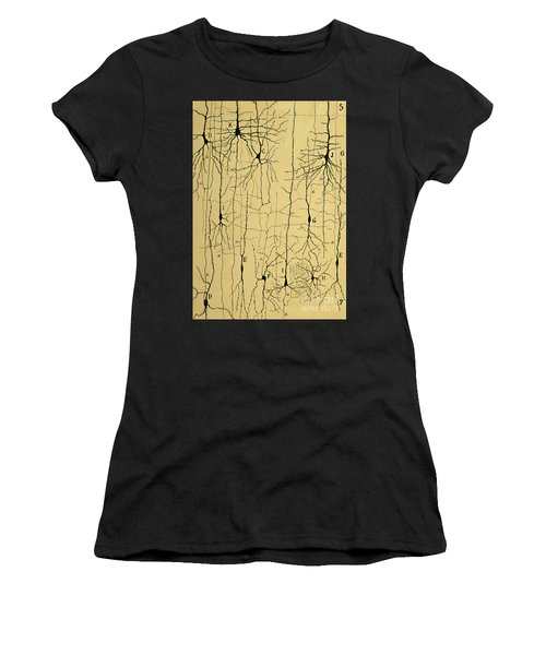 Cajal Drawing Of Microscopic Structure Of The Brain 1904 Women's T-Shirt