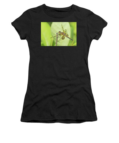 Calico Pennant Women's T-Shirt (Athletic Fit)