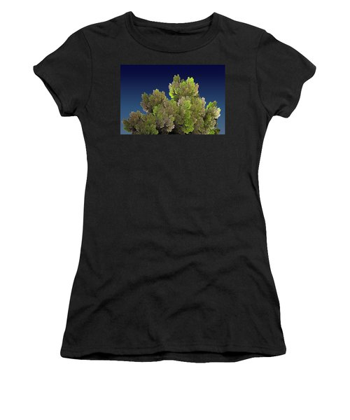 Callahan Grove Spring Women's T-Shirt (Athletic Fit)