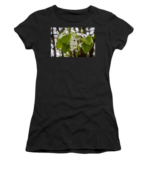 Callery Pear Tree Bloom Women's T-Shirt (Athletic Fit)