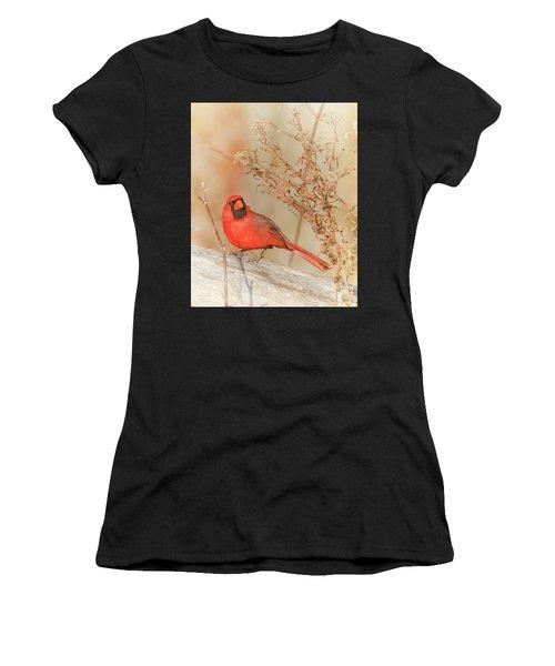 Cardinal In Fall  Women's T-Shirt