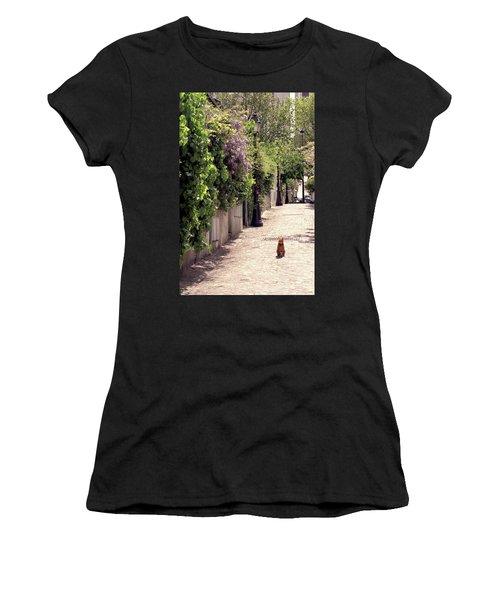 Cat On Cobblestone Women's T-Shirt