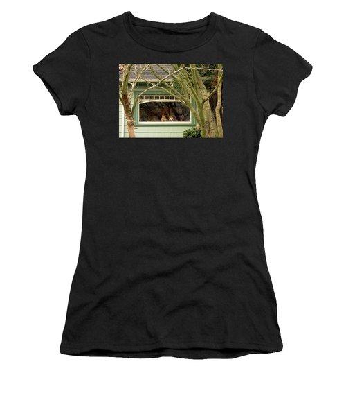 Cat Pals Waiting Women's T-Shirt