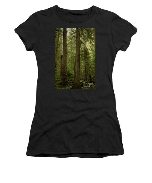 Cathedral Grove Women's T-Shirt (Athletic Fit)