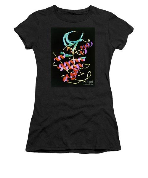 Cdk2 Protein Women's T-Shirt