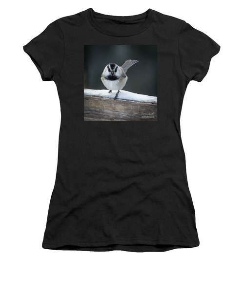 Chic At Big Springs Wildlife Art By Kaylyn Franks Women's T-Shirt