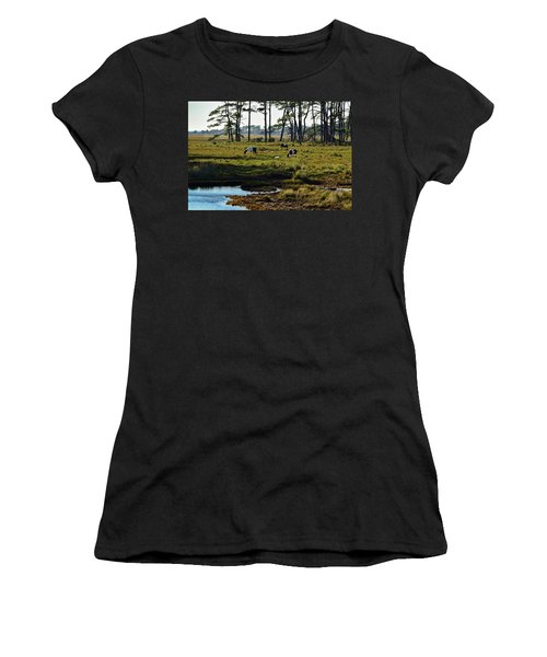 Chincoteague Ponies Women's T-Shirt