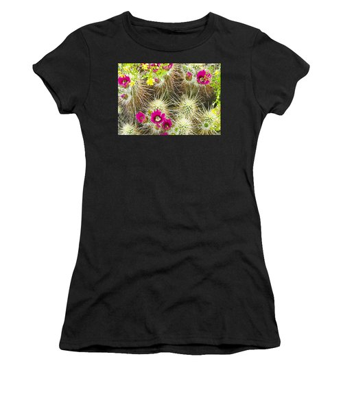 Cholla Cactus Blooms Women's T-Shirt