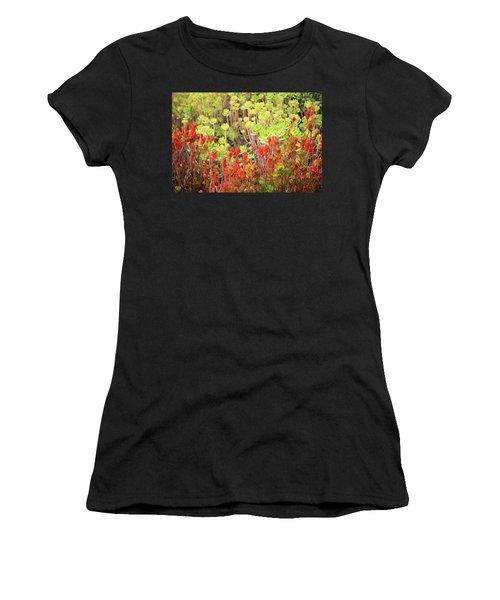 Christmas Cactii Women's T-Shirt