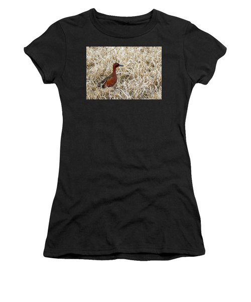 Women's T-Shirt featuring the photograph Cinnamon Teal by Michael Chatt