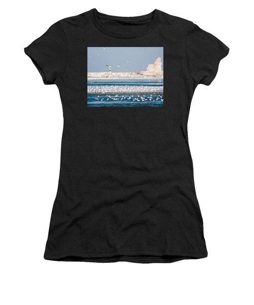 Cleveland Lighthouse In Ice  Women's T-Shirt