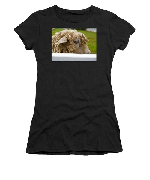 Close-up Of Leicester Longwool Women's T-Shirt (Athletic Fit)